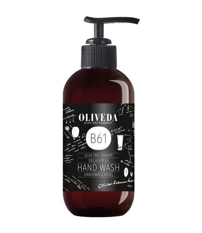 Oliveda B61 Delightful Hand Wash 250ml
