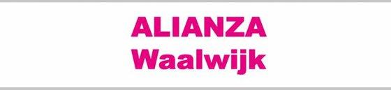 Waalwijk / Alianza