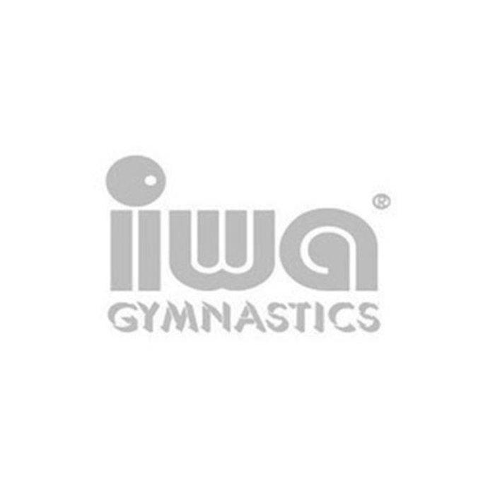 Gymnastics Shoes