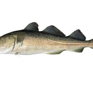 my seafood Kabeljauw filet met vel - 175 gram - Noordzee vis