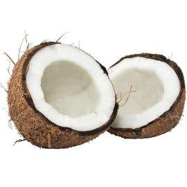 Proef Kokosnoot