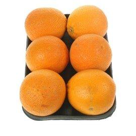 Proef Sinaasappel Pers 1kg (LAND)