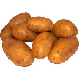 Proef Aardappel kruimig