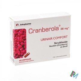 CRANBEROLA CYSCONTROL     GEL 60X36MG CFR 3130390