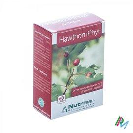 NUTRISAN HAWTHORNPHYT               CAPS  60       NUTRISAN
