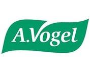 Dr A Vogel