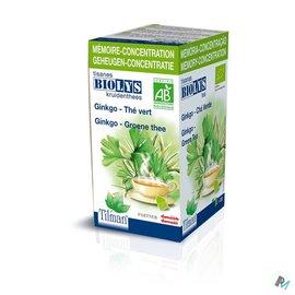 Biolys Biolys Ginkgo-groene Thee Tisane Tea-bags 20