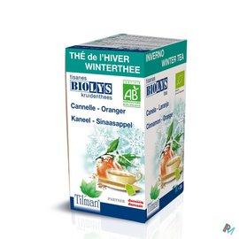 Biolys Biolys Cannelle-oranger Tea-bags 20