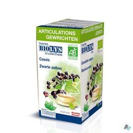 Biolys Biolys Aalbes Bio Tea-bags 20