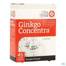 VITAFYTEA Vitafytea Ginkgo Concentra Tabl 45