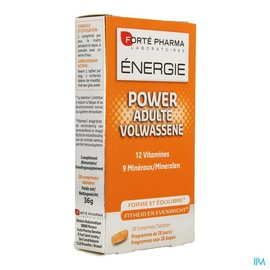 FORTEPHARMA Energie Power Adulte Comp 28