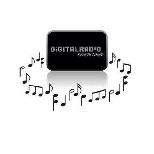 TECHNISAT TECHNISAT DIGITRADIO 220  FM (RDS), DAB+