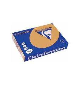 Clairefontaine Papier Clairefontaine gekleurd papier Trophée Pastel A4 mokka
