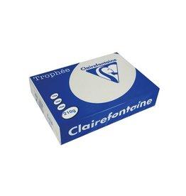 Clairefontaine Papier Clairefontaine Trophée Pastel A4 lichtgrijs, 210 g, 250 vel