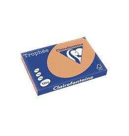Clairefontaine Papier Clairefontaine Trophée Pastel A3 mokka, 120 g, 250 vel