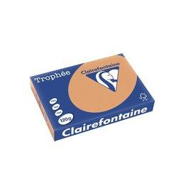 Clairefontaine Papier Papier Clairefontaine Trophée A4 120gr Mokkabruin 250vel