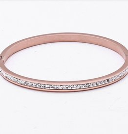 Axcess Protecting Riviere Rose Gold