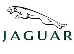 Jaguar Modellautos & Modelle