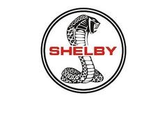 Shelby modelauto's | schaalmodellen | miniaturen