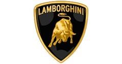 Lamborghini modelauto's & schaalmodellen 1:24