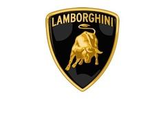Lamborghini modelauto's & schaalmodellen