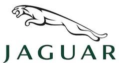 Jaguar model cars & scale models 1:24 (1/24)