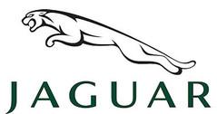 Jaguar modelauto's & schaalmodellen 1:18 (1/18)