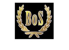 BoS Models modelauto's & schaalmodellen
