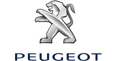 Peugeot Modellautos & Modelle 1:18 (1/18)