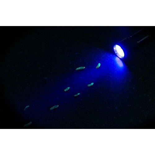 AllesTegenOngedierte.nl Zaklantaarn 5-led UV black light