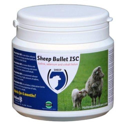 H.A.C. Sheep Bullet voor Ooien (per 20 stuks)