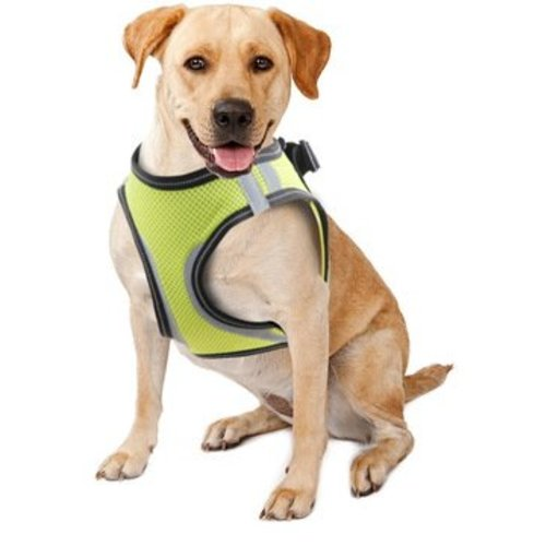 Pawise Doggy Safety Harness