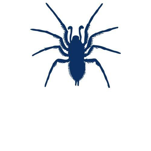 Spinnen en Slakken