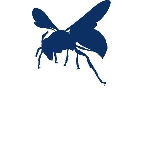 Wespen