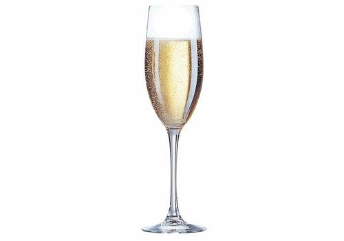 Champagne Flute 24cl ( Set van 6 )