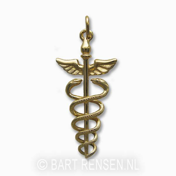Golden caduceus pendant from caduceus pendant 14 carat gold mozeypictures Image collections