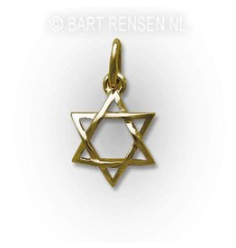 Hexagram pendant - gold