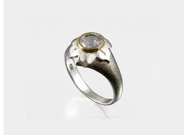 Symbolische ringen