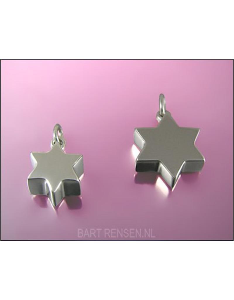 Ash pendant - sterling silver