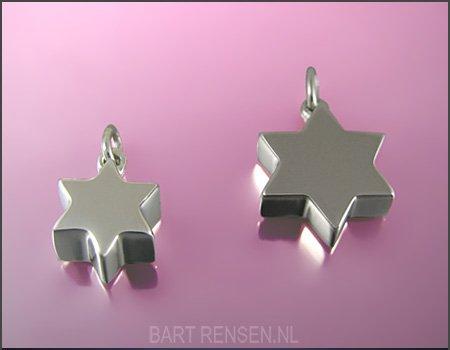 Ash pendant - silver