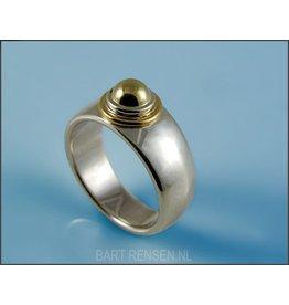 Herdenkings Ring - Zilver - Goud