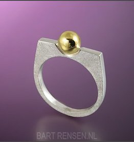 Memorial Ring - Silver - Gold