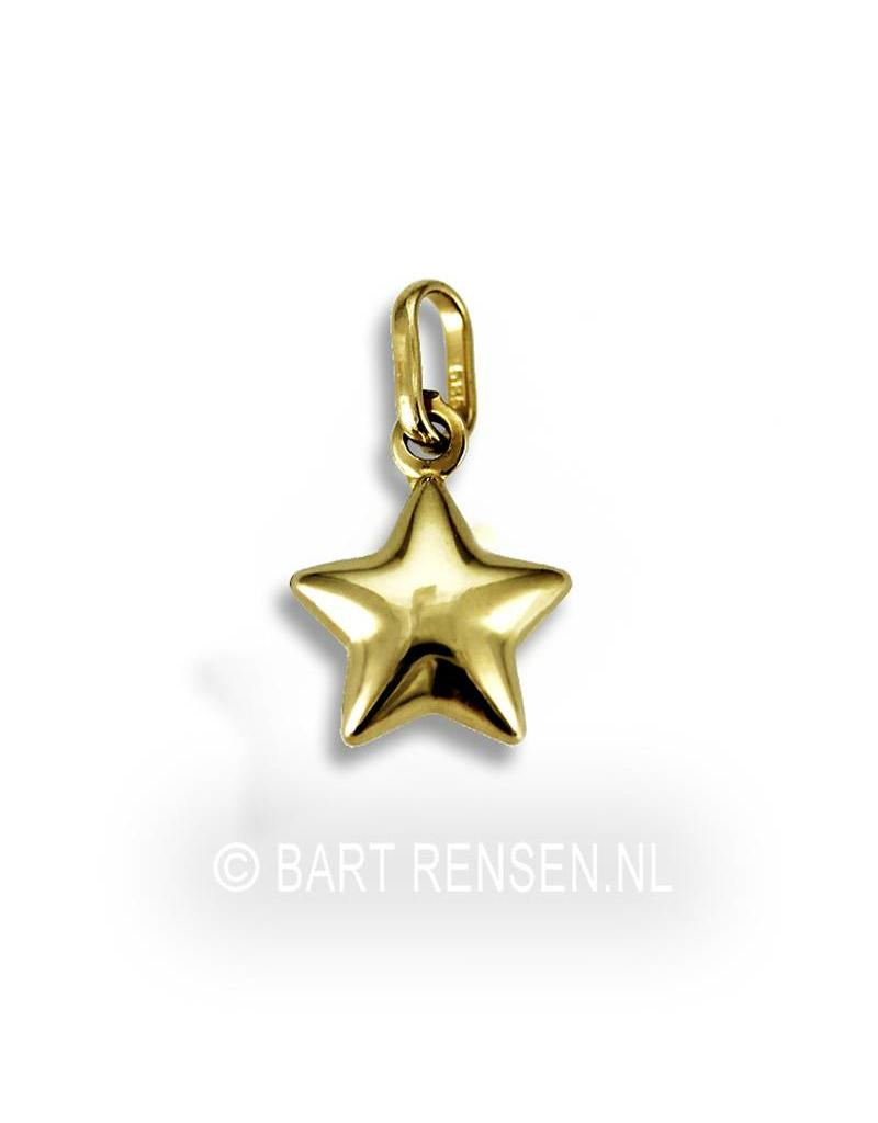 Golden Star pendant - 14 crt gold