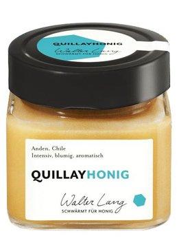 Quillay Honig Bio Walter Lang