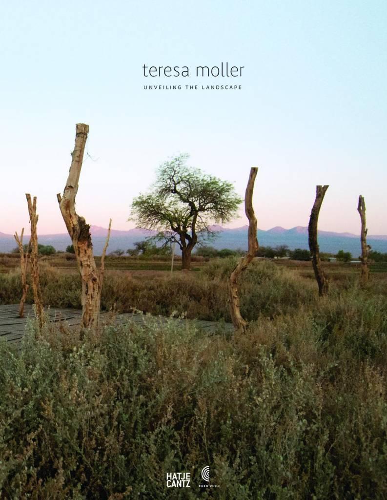 Teresa Moller and Associates Unveiling the Landscape