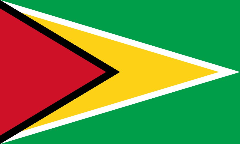 Flag Of Guyana Image And Meaning Guyanese Flag Country Flags