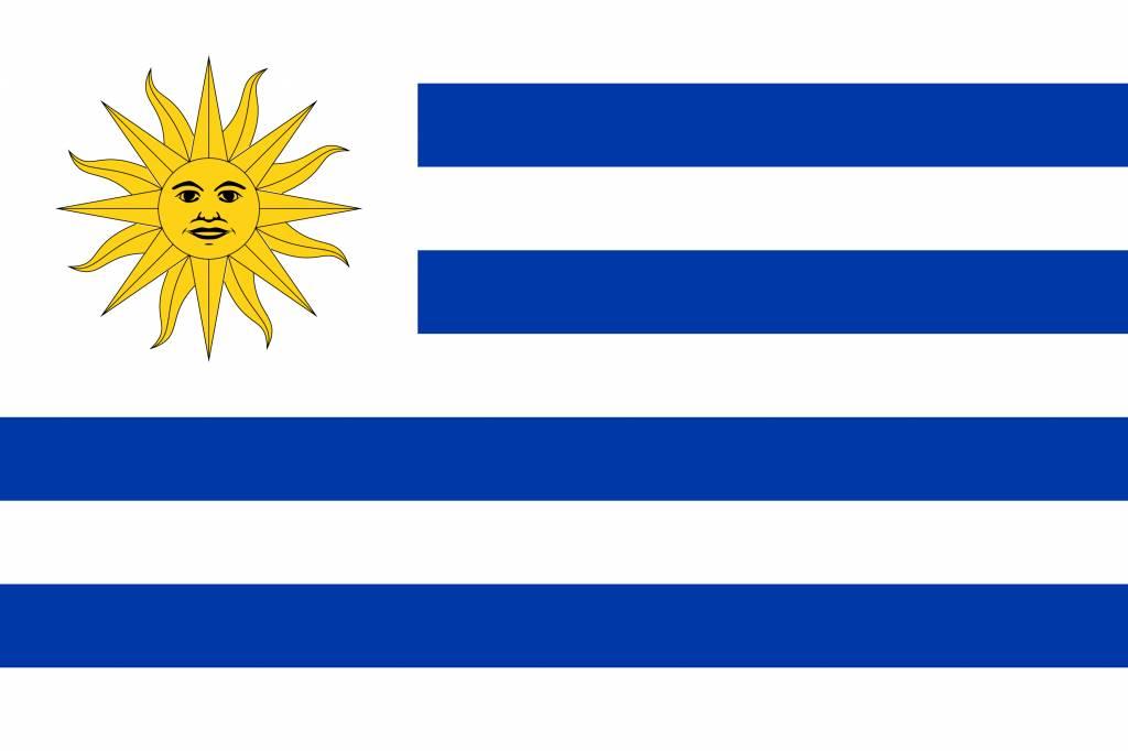 Uruguay Flag Coloring