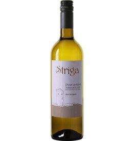Striga Pinot Grigio Terre Siciliane