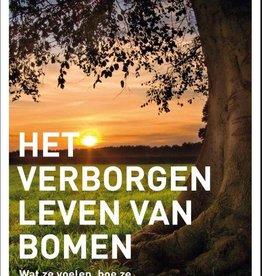 Peter Wohlleben, Verborgen leven van bomen
