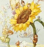 Margaret Tarrant, Sunflower with Fairies PCE 027